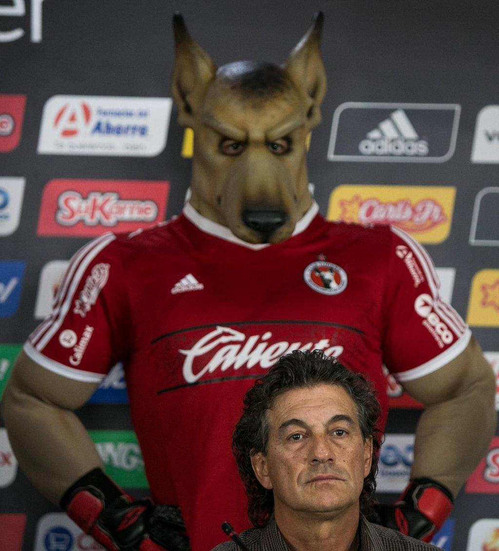 Xolo Mayor