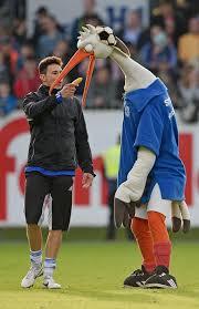 Holstein Kiel mascot Stolle