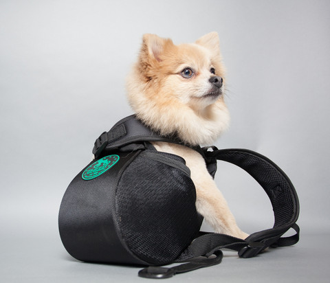 Ruffit Dog Backpacks01