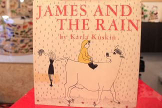 JAMES AND THE RAIN