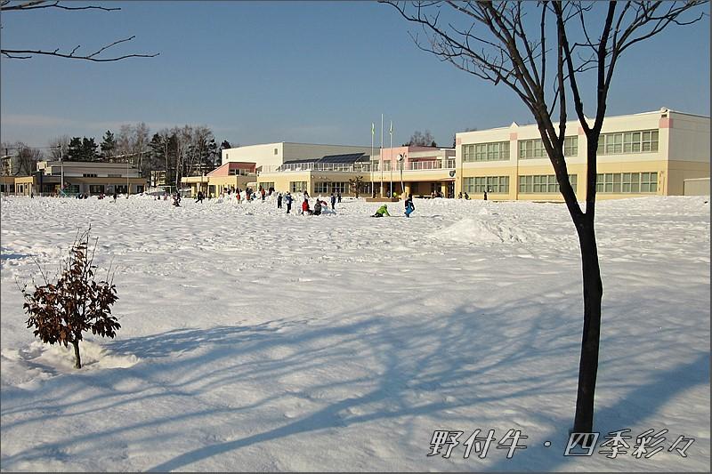 s-C-130406-0.jpg