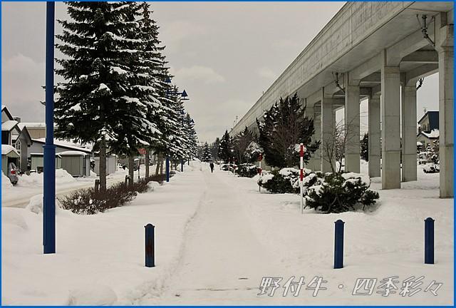 s-C-133352-0.jpg