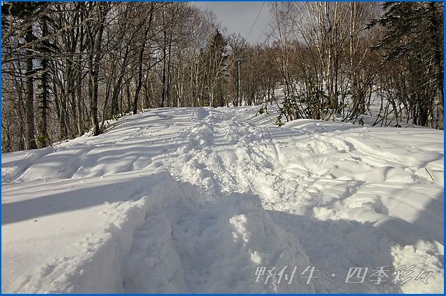 s-Canon20160107-132706-0.jpg