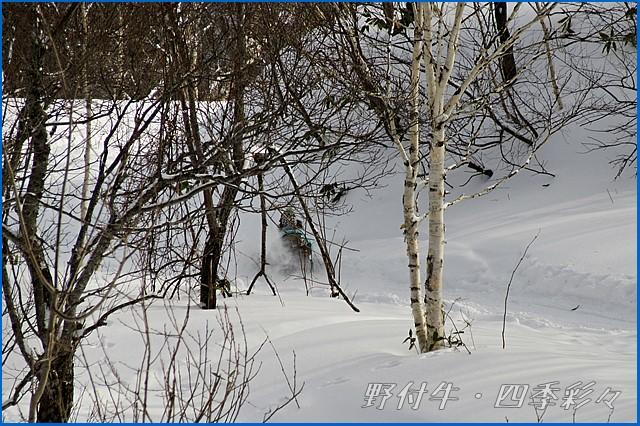 s-Canon20160107-134342-0.jpg