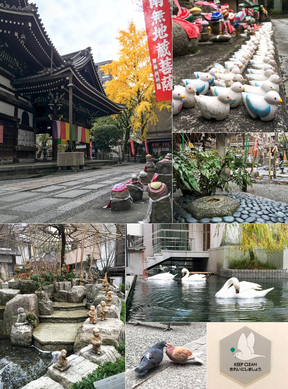 kyoto151212_05.jpg
