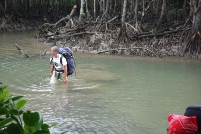 14オヒルギの川を渡るm