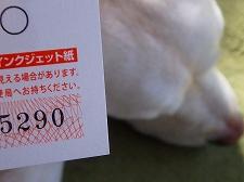 P1280041.jpg