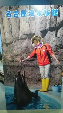 水族館で顔出しパネル
