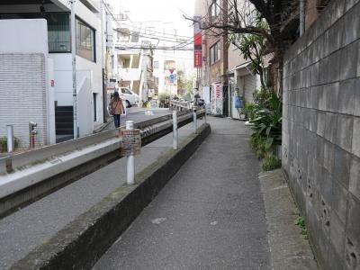 150111udagawaryokudo06