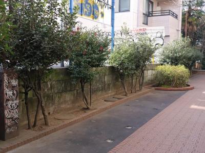 150111udagawaryokudo08