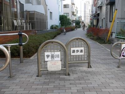 150111udagawaryokudo09