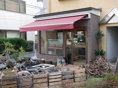 150111udagawaryokudo10