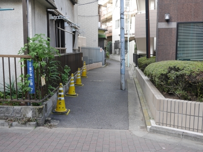 150111udagawaryokudo23