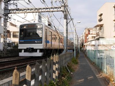 150111udagawaryokudo30