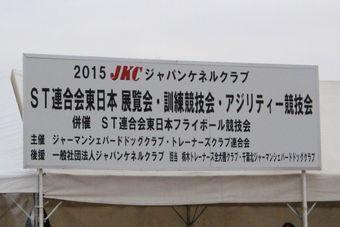 DSC_0013_2015121421152165f.jpg