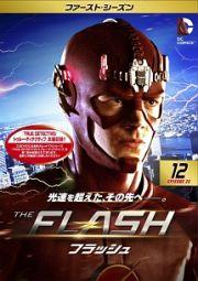 flash12.jpg
