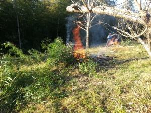 151221たき火
