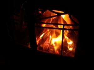 160109薪ストーブの火