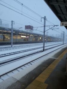 160120雪