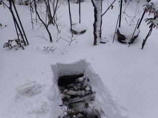雪の朝(池の積雪)