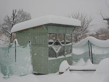 2016雪1