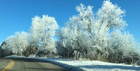 frost01041601.jpg