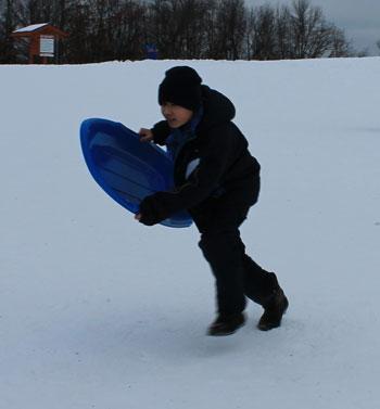 sledding1602.jpg