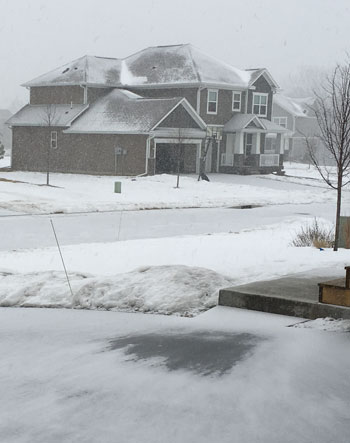 snow02031609.jpg