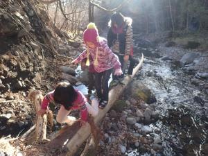 自然塾冬1 (18)