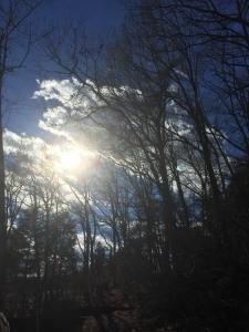 自然塾冬1 (11)