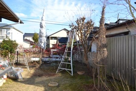 枝を整えながら