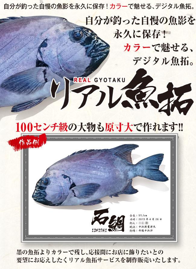 gyotaku_image.jpg