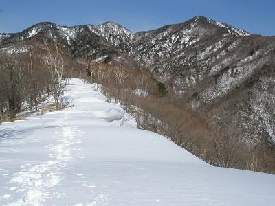 8 積雪期の郡界尾根
