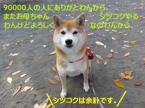 90000-29