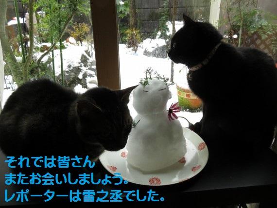20160119-0015.jpg