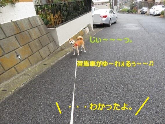 20160121-0008.jpg