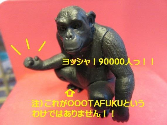 90000-00.jpg