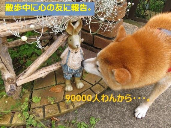 90000-19.jpg