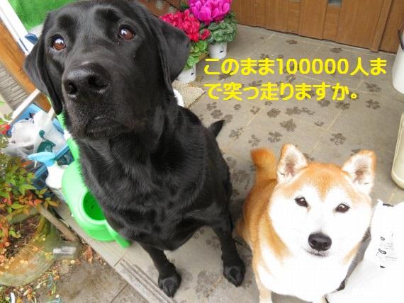 90000-20.jpg
