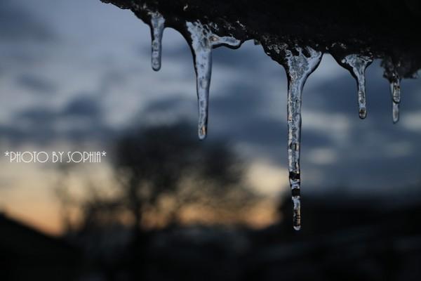 この冬一番冷え込んだ朝Ⅱ