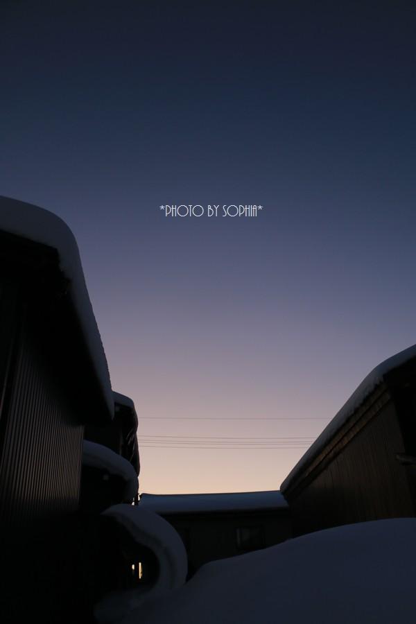 曲線美にも夕日
