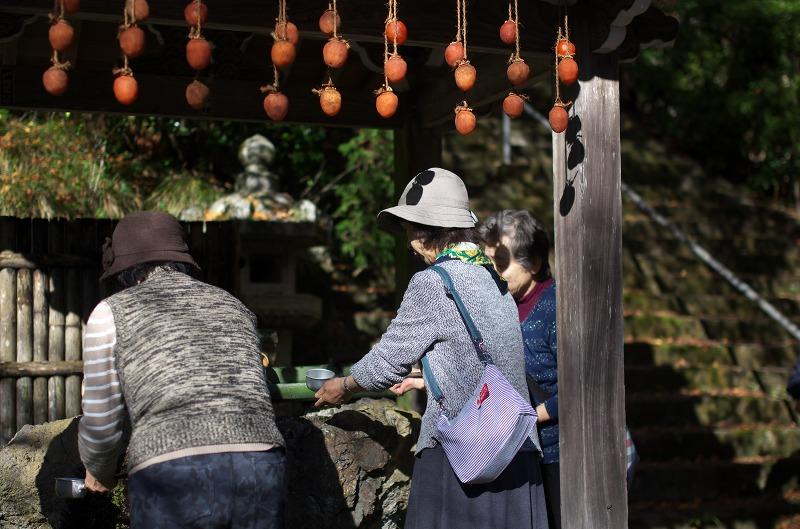 京都 金蔵寺 紅葉