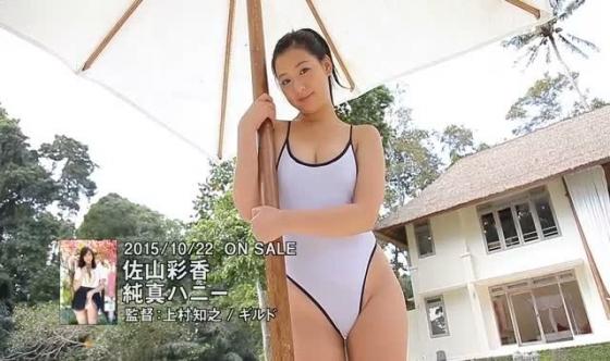 佐山彩香 純真ハニーのFカップ巨乳とむっちりお尻キャプ 画像57枚 27
