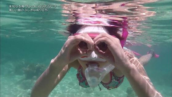 鉢嶺杏奈 水着ダイビング姿を披露した大島優子似ミステリーハンター 画像30枚 15