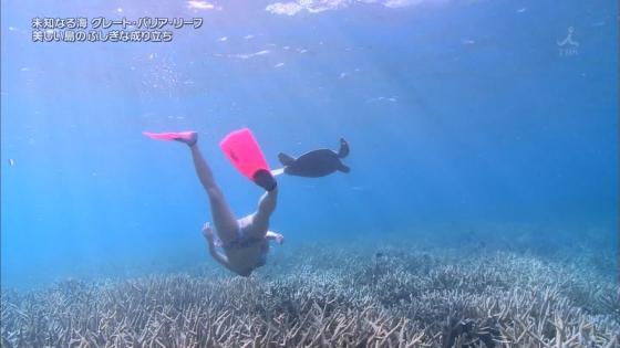 鉢嶺杏奈 水着ダイビング姿を披露した大島優子似ミステリーハンター 画像30枚 17