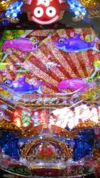 DSC_0253_201601161856118e4.jpg