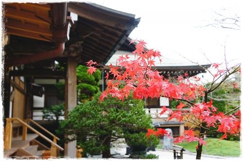 鎌倉1DSC01566