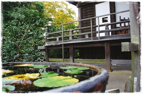 鎌倉1DSC01588