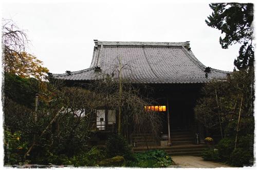 鎌倉1DSC01589