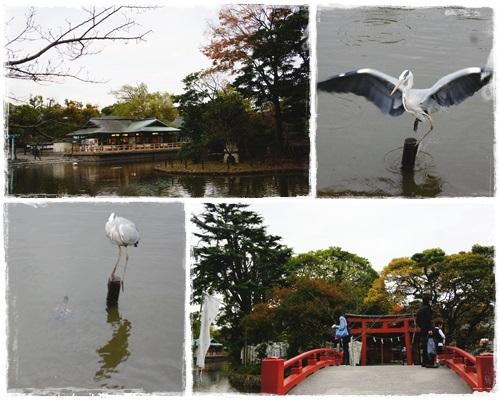 鎌倉1page-5